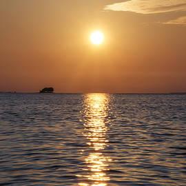 Bill Cannon - Palm Harbor Florida