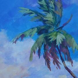Palm in Evening Light - John Clark