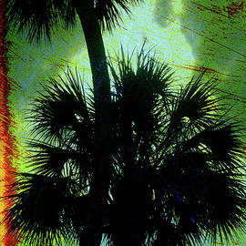 Susanne Van Hulst - Palm Silhouettes