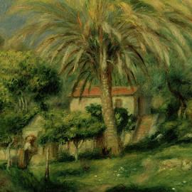 Palm Trees - Pierre Auguste Renoir