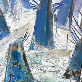 John Hintz - Palms 69CN - A Thorny Path Forward
