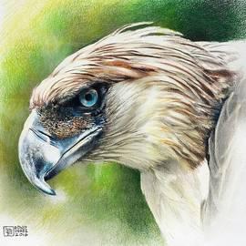 Bong Perez - Philippine Eagle - Pamana