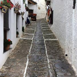 Colette V Hera  Guggenheim  - Pampaneira Street Spain