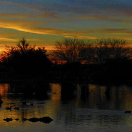Kimo Fernandez - PANA A Ducky Sunset