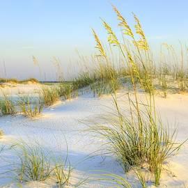 JC Findley - Panama City Beach