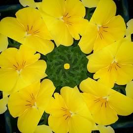 Nancy Pauling - Pansy Wreath