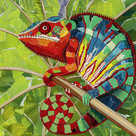 Shawna  Rowe - Panther Chameleon