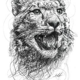 Michael  Volpicelli  - Leopard