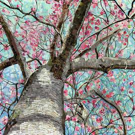 Shawna Rowe - Paper Magnolias