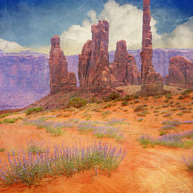 R christopher Vest - Paprika Sands At Monument Valley