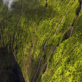 Dustin  LeFevre - Paradise Falls