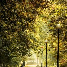 Park lane - Jaroslaw Grudzinski