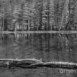 Alexander Kunz - Parker Lake Reflection