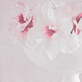 Sandra Foster - Pastel Paradise