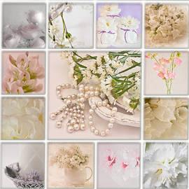 Sandra Foster - Pastel Photo Collage