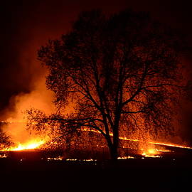 Pasture Burn