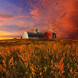 Phil Koch - Patience