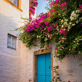 Inge Johnsson - Patmos Bougainvillea