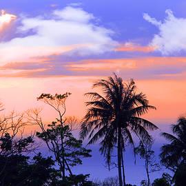 patong thailand - Mark Ashkenazi