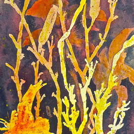 Carolyn Rosenberger - Patterns in Nature