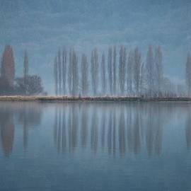 Catherine Reznitchenko - Paysage normand en hiver