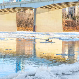 Carol Cottrell - Peaceful Swim in Edmonton Alberta