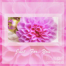 Mona Stut - Peachy Pink Dahlias Just For You