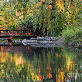 Charline Xia - Peak of Fall Colors