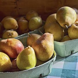 Caitlyn  Grasso - Pear Golden