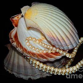 Kaye Menner - Pearly Shells by Kaye Menner