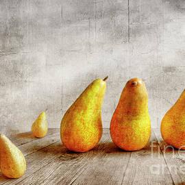 Pears - Veikko Suikkanen