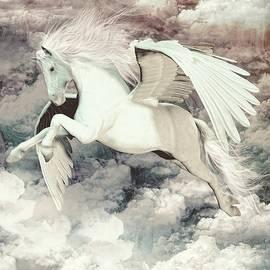 Joaquin Abella - Pegasus flight Olympus