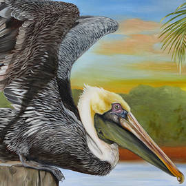 Phyllis Beiser - Pelican Paradise