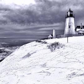 Pemaquid Point Winter Scene - Olivier Le Queinec
