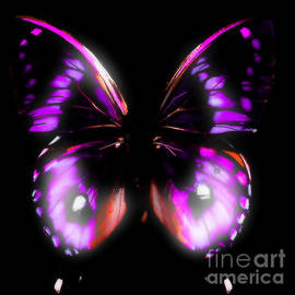 Gayle Price Thomas - Perfect Purple Butterfly