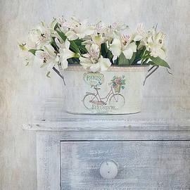 Kim Hojnacki - Peruvian Lilies