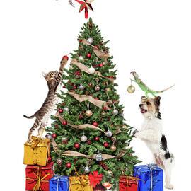 Pets Decorating Christmas Tree - Susan Schmitz