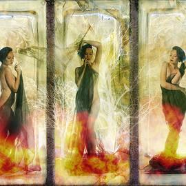 Terry Fleckney - Phoenix Rising