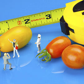 Paul Ge - Photography of tomatoes little people on food