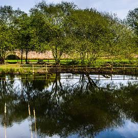 Picnic Area In The Marnel River IV