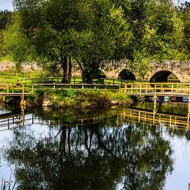 Picnic Area In The Marnel River V