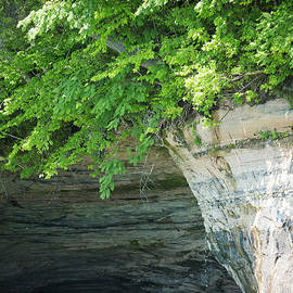 Denise Woldring - Pictured Rocks #1