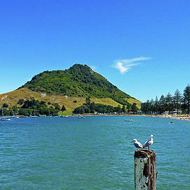 Selena Boron - Pilot Bay Beach 2 - Mount Maunganui Tauranga New Zealand