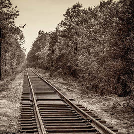 Anthony Tucci - Pine Barren Rails