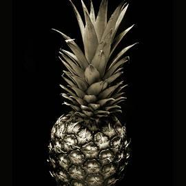 Terence Davis - Pineapple in Sepia.