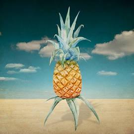 Mark Ashkenazi - Pineapple