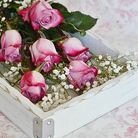 Diane Alexander - Pink and White Roses in White Box