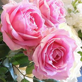 Helene Fallstrom - Pink and white weddingroses