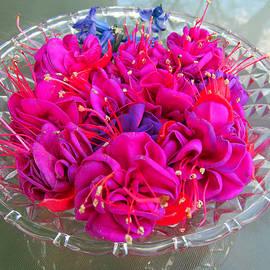 Tina M Wenger - Pink Centerpiece