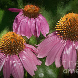Janice Rae Pariza - Pink Cone Flowers